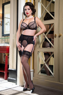 Sheer Seduction Garter Belt